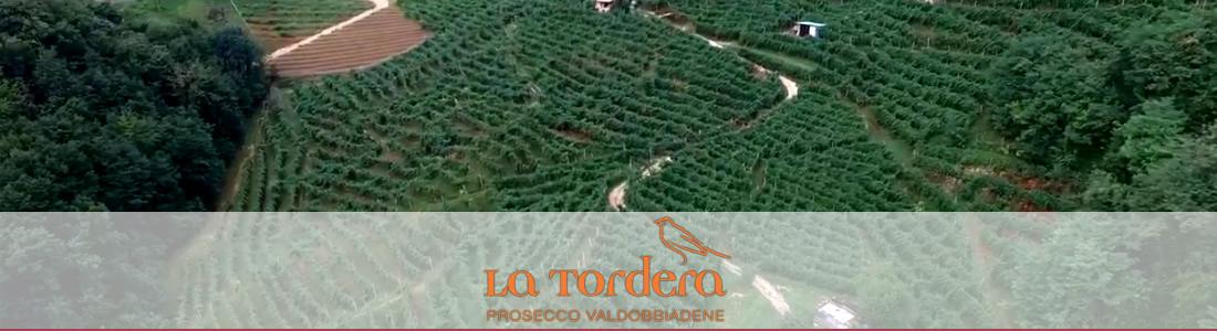 La Tordera Wine
