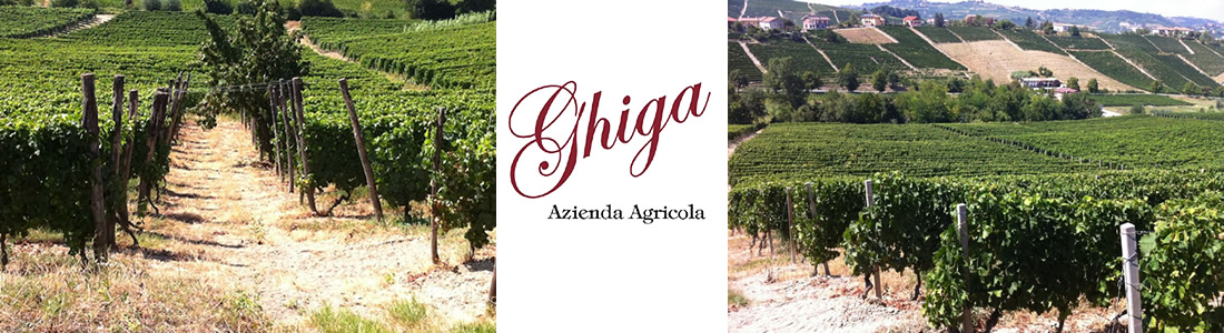 Ghiga piedmont barbera wine from italy